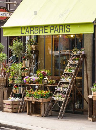 Carnet d'adresses de Danielle à Paris L'arbre